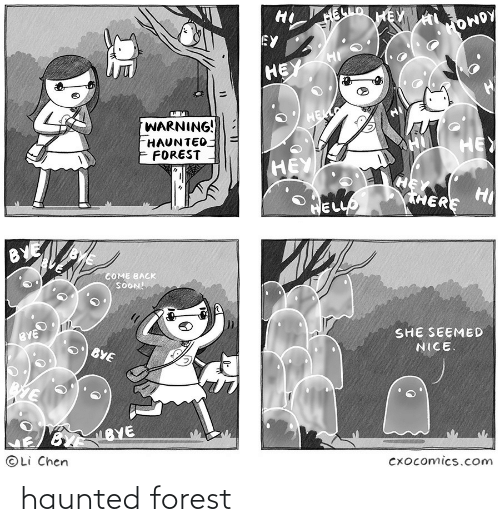 haunted: haunted forest