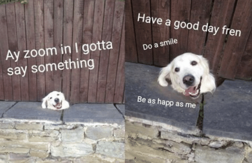Zoom, Good, and Smile: Have a good day fren  Ay zoom in I gotta  say something  Do a smile  Be as happ as me