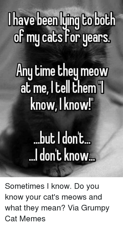 Grumpy Cats: have been luingt0 both  or my cats For years  Anytime they meow  at I them  I  me, tell know,I know!  but I dont.  dont know Sometimes I know. Do you know your cat's meows and what they mean? Via Grumpy Cat Memes