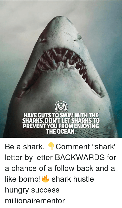 "Hungry, Memes, and Shark: HAVE GUTS TO SWIM WITH THE  SHARKS. DON'TLET SHARKSTO  PREVENTYOU FROMENJOYING  THE OCEAN. Be a shark. 👇Comment ""shark"" letter by letter BACKWARDS for a chance of a follow back and a like bomb!🔥 shark hustle hungry success millionairementor"
