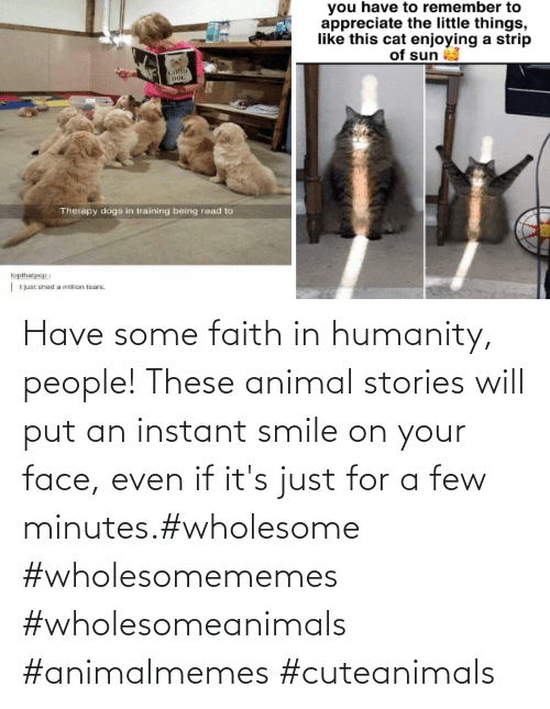 minutes: Have some faith in humanity, people! These animal stories will put an instant smile on your face, even if it's just for a few minutes.#wholesome #wholesomememes #wholesomeanimals #animalmemes #cuteanimals