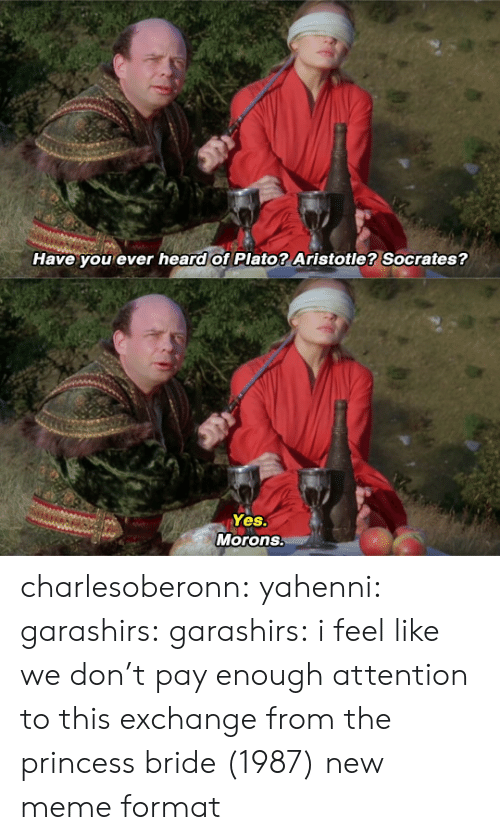 Meme, Tumblr, and Aristotle: Have you ever heard of Plato? Aristotle? Socrates?   Yes.  Morons. charlesoberonn: yahenni:  garashirs:  garashirs: i feel like we don't pay enough attention to this exchange from the princess bride (1987) new meme format