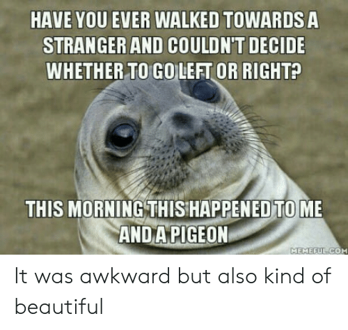 This Happened To Me: HAVE YOU EVER WALKED TOWARDS A  STRANGER AND COULDN'T DECIDE  WHETHER TO GOLEFT OR RIGHT?  THIS MORNING THIS HAPPENED TO ME  ANDAPIGEON  MEMEFULC  OM It was awkward but also kind of beautiful