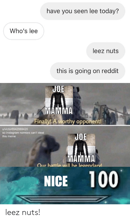 Instagram, Meme, and Reddit: have you seen lee today?  Who's lee  leez nuts  this is going on reddit  JOE  MAMMA  Finally! A worthy opponent!  /victor6942069420  so instagram normies can't steal  this meme  JOE  MAMMA  Our battle will be legendarul  NICE 100 leez nuts!