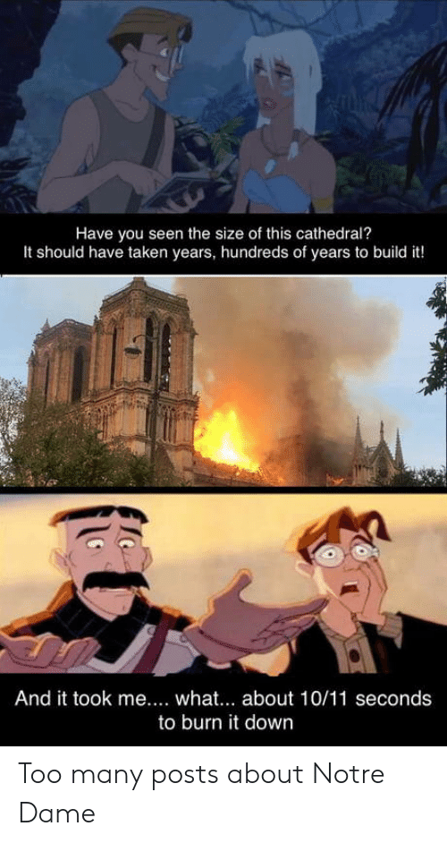 Taken, Notre Dame, and Down: Have you seen the size of this cathedral?  It should have taken years, hundreds of years to build it!  And it took me.... what. about 10/11 seconds  to burn it down Too many posts about Notre Dame