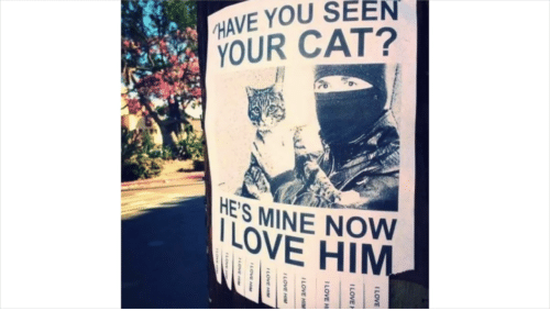Love, Cat, and Mine: HAVE YOU SEEN  YOUR CAT?  HES MINE NOW  LOVE HIM