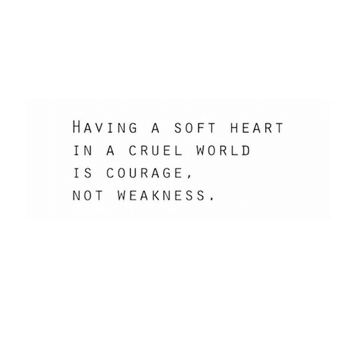 Heart, World, and Courage: HAVING A SOFT HEART  IN A CRUEL WORLD  IS COURAGE,  NOT WEAKNESS.