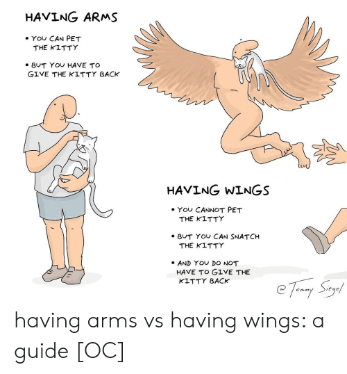 Yo, Wings, and Back: HAVING ARMS  . YOU CAN PET  THE KITTY  BUT YOU HAVE TO  GIVE THE KLTTY BACK  CLe  HAVING WINGS  ·YOU CANNOT PET  THE KITTY  BUT YO CAN SNATCH  THE KITTY  AND YO DO NOT  HAVE TO GIVE THE  KLTTY BACK  ege having arms vs having wings: a guide [OC]