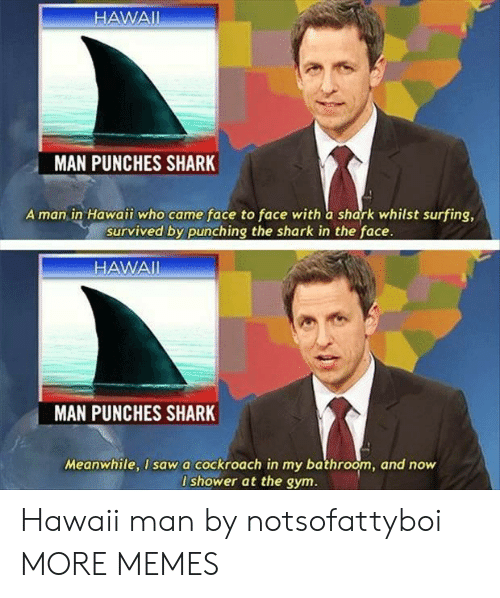 surfing: HAWAII  MAN PUNCHES SHARK  A man in Hawaii who came face to face with a shark whilst surfing,  survived by punching the shark in the face.  HAWAI  MAN  PUNCHES SHARK  Meanwhile, I sawa cockroach in my bathroom, and now  I shower at the gym. Hawaii man by notsofattyboi MORE MEMES