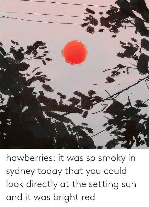 bright: hawberries:  it was so smoky in sydney today that you could look directly at the setting sun and it was bright red