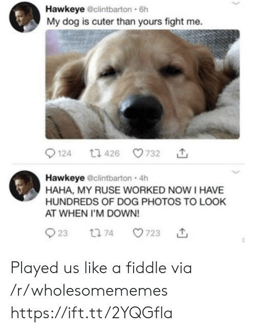 Cuter Than: Hawkeye @clintbarton 6h  My dog is cuter than yours fight me.  t1 426  124  732  Hawkeye @clintbarton 4h  HAHA, MY RUSE WORKED NOWI HAVE  HUNDREDS OF DOG PHOTOS TO LOOK  AT WHEN I'M DOWN!  23  723  t 74 Played us like a fiddle via /r/wholesomememes https://ift.tt/2YQGfla