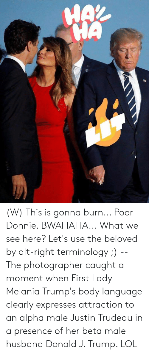 Trumps: HAX  HA (W) This is gonna burn... Poor Donnie. BWAHAHA...  What we see here? Let's use the beloved by alt-right terminology ;) -- The photographer caught a moment when First Lady Melania Trump's body language clearly expresses attraction to an alpha male Justin Trudeau in a presence of her beta male husband Donald J. Trump.   LOL