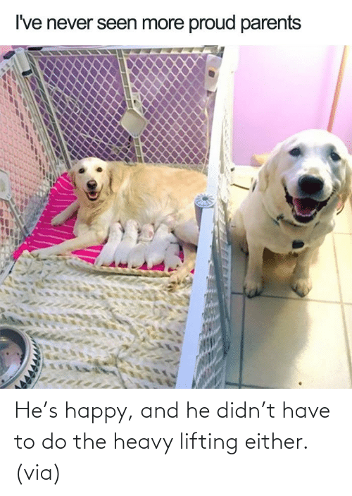 heavy: He's happy, and he didn't have to do the heavy lifting either.(via)