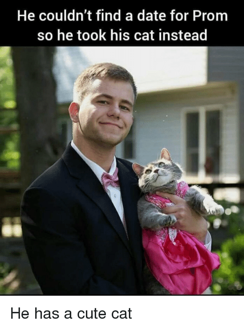 Cute, Date, and Cat: He couldn't find a date for Prom  so he took his cat instead He has a cute cat