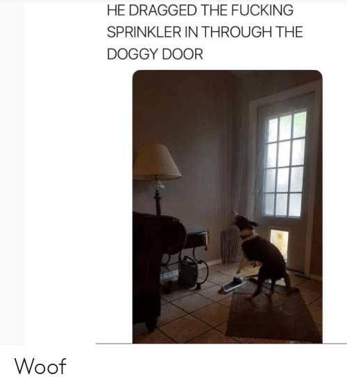 Fucking, Door, and Doggy: HE DRAGGED THE FUCKING  SPRINKLER IN THROUGH THE  DOGGY DOOR Woof