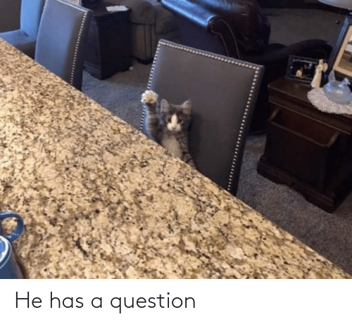 question: He has a question