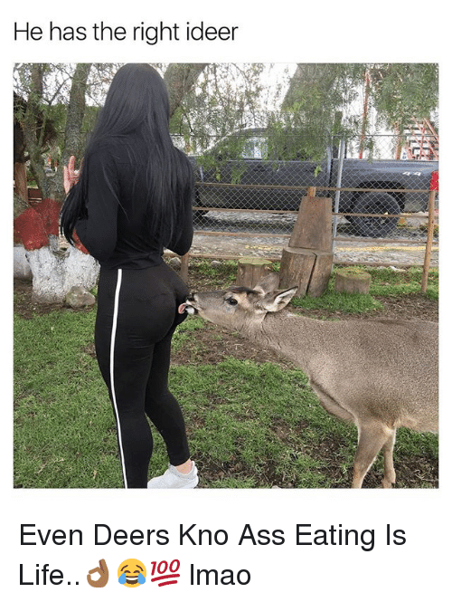 Ass Eating: He has the right ideer Even Deers Kno Ass Eating Is Life..👌🏾😂💯 lmao