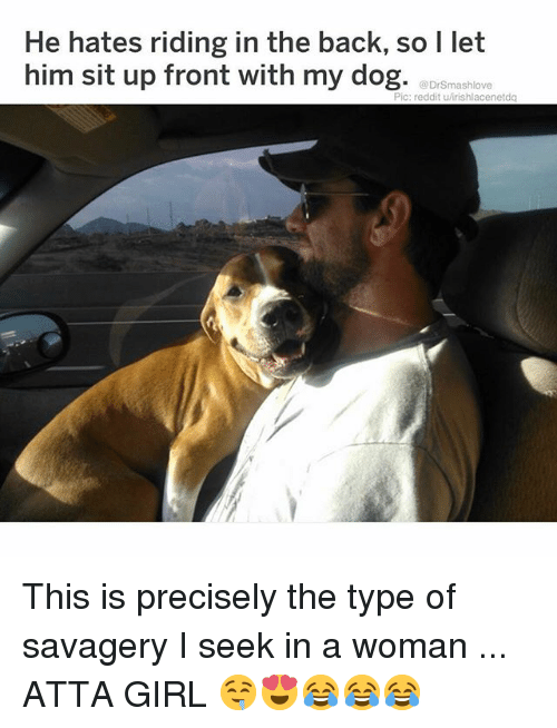 sit up: He hates riding in the back, so l let  him sit up front with my dog. aDrßmashlox  Pic: reddit u/irishlacenetdq This is precisely the type of savagery I seek in a woman ... ATTA GIRL 🤤😍😂😂😂