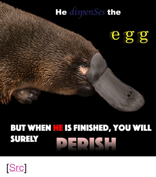 """Gg, Reddit, and Com: He  ispenSes  the  e gg  BUT WHEN HE IS FINISHED, YOU WILL  SURELY <p>[<a href=""""https://www.reddit.com/r/surrealmemes/comments/8eoczv/you_have_sz_seconds_remaining/"""">Src</a>]</p>"""
