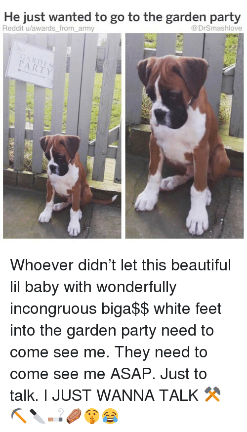 Beautiful, Memes, and Party: He just wanted to go to the garden party  Reddit u/awards_ from_army  @DrSmashlove  GARDE  PARTY Whoever didn't let this beautiful lil baby with wonderfully incongruous biga$$ white feet into the garden party need to come see me. They need to come see me ASAP. Just to talk. I JUST WANNA TALK ⚒⛏🔪🚬⚰️🤫😂