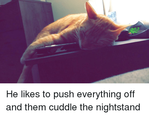 Push, Them, and Cuddle