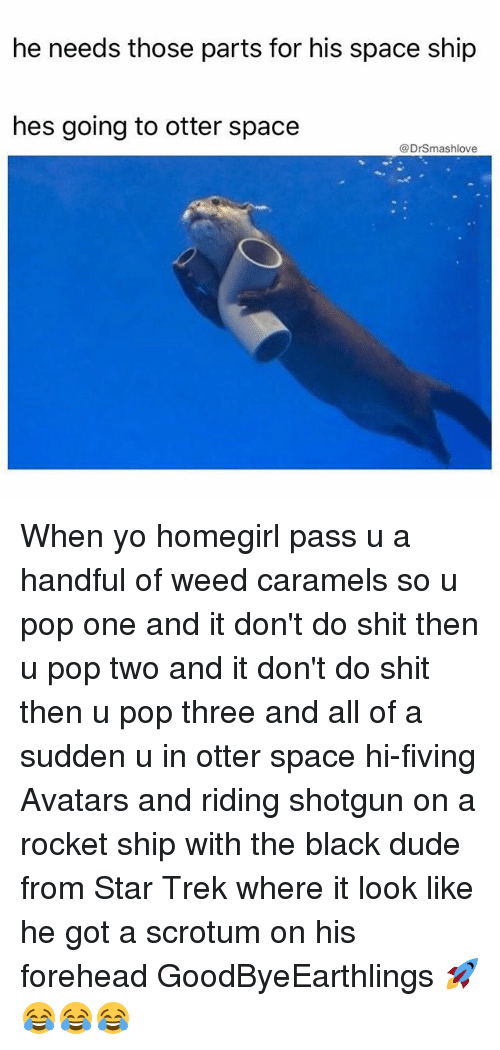 Dude, Memes, and Pop: he needs those parts for his space ship  hes going to otter space  @DrSmashlove When yo homegirl pass u a handful of weed caramels so u pop one and it don't do shit then u pop two and it don't do shit then u pop three and all of a sudden u in otter space hi-fiving Avatars and riding shotgun on a rocket ship with the black dude from Star Trek where it look like he got a scrotum on his forehead GoodByeEarthlings 🚀😂😂😂