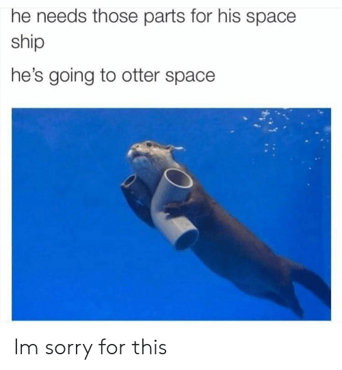 Sorry, Space, and Otter: he needs those parts for his space  ship  he's going to otter space Im sorry for this