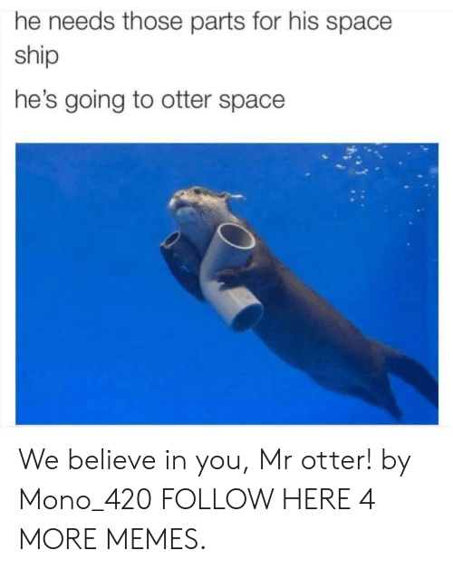 mono: he needs those parts for his space  ship  he's going to otter space We believe in you, Mr otter! by Mono_420 FOLLOW HERE 4 MORE MEMES.