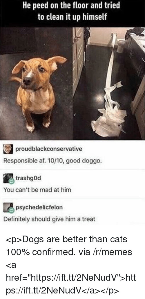 """Af, Anaconda, and Cats: He peed on the floor and tried  to clean it up himself  proudblackconservative  Responsible af. 10/10, good doggo.  trashgOd  You can't be mad at him  psychedelicfelon  Definitely should give him a treat <p>Dogs are better than cats 100% confirmed. via /r/memes <a href=""""https://ift.tt/2NeNudV"""">https://ift.tt/2NeNudV</a></p>"""