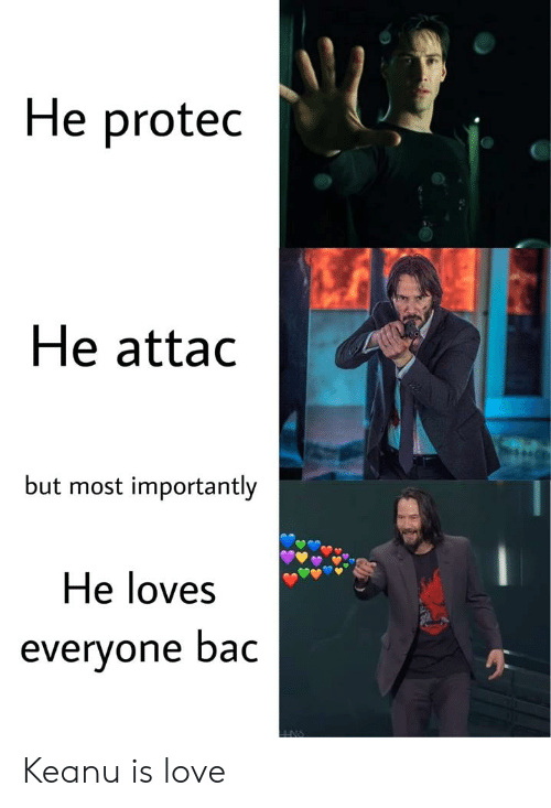 Love, Bac, and Everyone: He protec  He attac  but most importantly  He loves  everyone bac Keanu is love