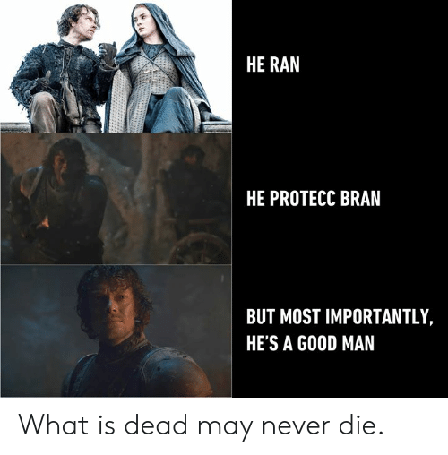 Dank, What Is, and Never: HE RAN  HE PROTECC BRAN  BUT MOST IMPORTANTLY,  HE'S A G0OD MAN What is dead may never die.