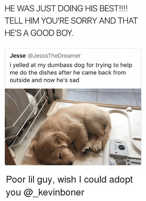 Telled: HE WAS JUST DOING HIS BEST!!!  TELL HIM YOU'RE SORRY AND THAT  HE'S A GOOD BOY.  Jesse @JesssTheDreamer  i yelled at my dumbass dog for trying to help  me do the dishes after he came back from  outside and now he's sad Poor lil guy, wish I could adopt you @_kevinboner