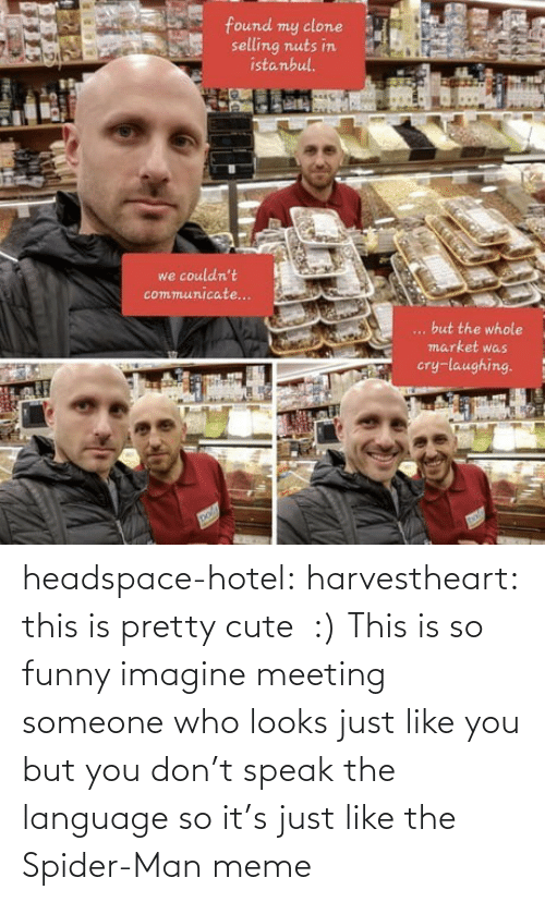 meeting: headspace-hotel: harvestheart: this is pretty cute  :)   This is so funny imagine meeting someone who looks just like you but you don't speak the language so it's just like the Spider-Man meme