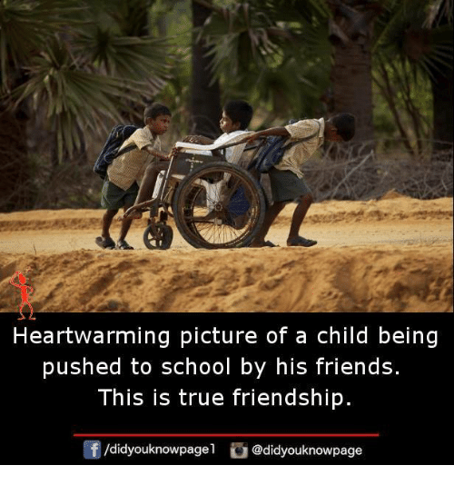 Friends, Memes, and School: Heartwarming picture of a child being  pushed to school by his friends.  This is true friendship.  団/d.dyouknowpagel。@didyouknowpage