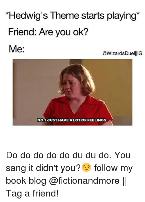 Memes, Sang, and Blog: Hedwig's Theme starts playing*  Friend: Are you ok?  Me:  @WizardsDuellIG  NO.1 JUST HAVE ALOT OF FEELINGS Do do do do do du du do. You sang it didn't you?😏 follow my book blog @fictionandmore || Tag a friend!