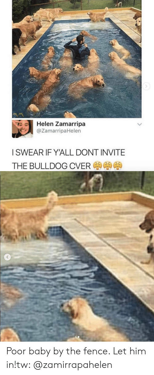 Bulldog, Baby, and Him: Helen Zamarripa  @ZamarripaHelen  ISWEAR IF YALL DONT INVITE  THE BULLDOG CVER Poor baby by the fence. Let him in!tw: @zamirrapahelen