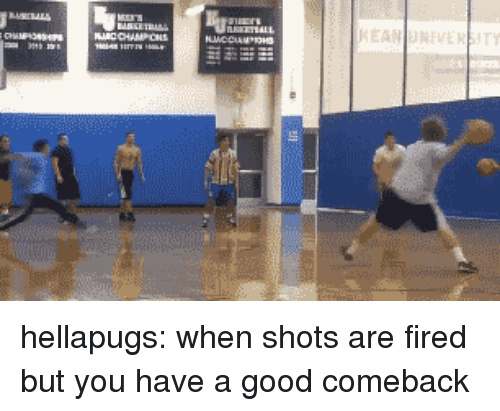 Tumblr, Blog, and Good: hellapugs: when shots are fired but you have a good comeback
