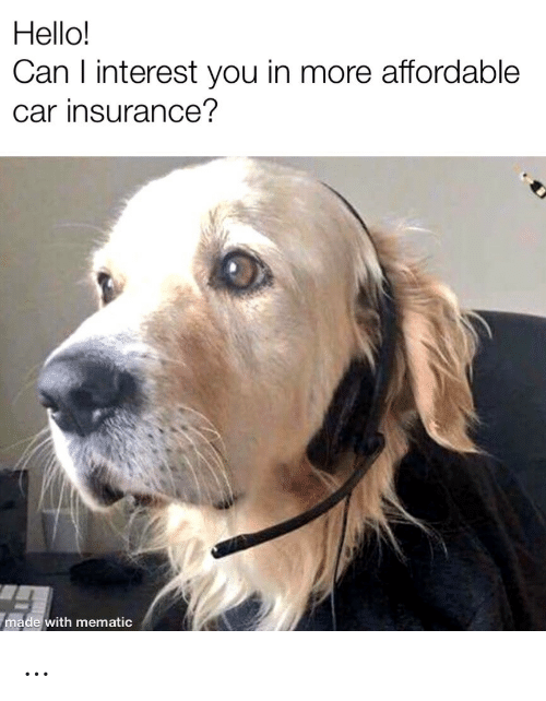 insurance: Hello!  Can I interest you in more affordable  car insurance?  made with mematic …