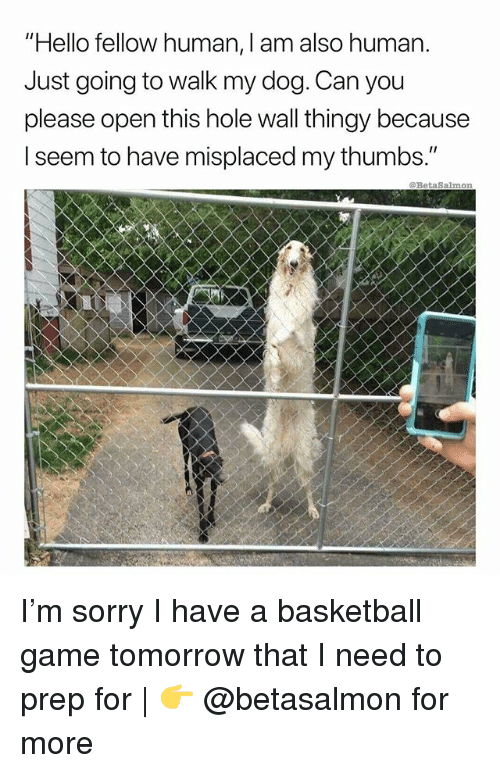 "Basketball, Hello, and Memes: ""Hello fellow human, I am also human.  Just going to walk my dog. Can you  please open this hole wall thingy because  I seem to have misplaced my thumbs.""  @RettaSalmon I'm sorry I have a basketball game tomorrow that I need to prep for 