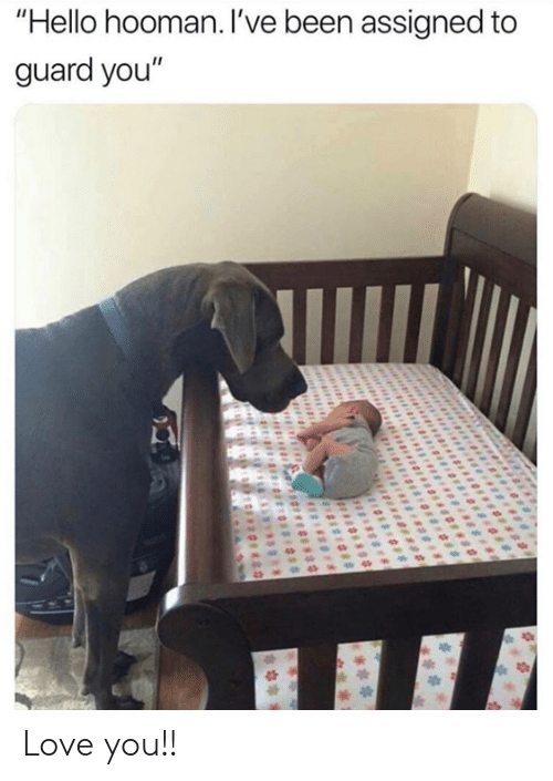"""Hooman: """"Hello hooman. I've been assigned to  guard you"""" Love you!!"""