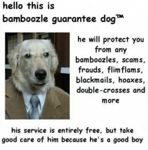 Hello, Free, and Good: hello this is  bamboozle guarantee dog  he will protect you  from any  bamboozles, scams,  frauds, flimflams,  blackmails, hoaxes,  double-crosses and  more  his service is entirely free, but take  good care of him because he's a good boy