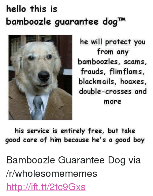 """Hello, Free, and Good: hello this is  bamboozle guarantee dog  he will protect you  from any  bamboozles, scams,  frauds, flim flams,  blackmails, hoaxes  double-crosses and  more  his service is entirely free, but take  good care of him because he's a good boy <p>Bamboozle Guarantee Dog via /r/wholesomememes <a href=""""http://ift.tt/2tc9Gxs"""">http://ift.tt/2tc9Gxs</a></p>"""