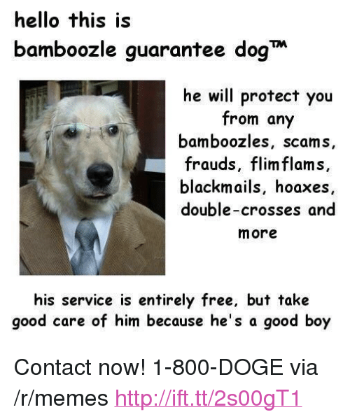 """Doge, Hello, and Memes: hello this is  bamboozle guarantee dog  he will protect you  from any  bamboozles, scams,  frauds, flim flams,  blackmails, hoaxes  double-crosses and  more  his service is entirely free, but take  good care of him because he's a good boy <p>Contact now! 1-800-DOGE via /r/memes <a href=""""http://ift.tt/2s00gT1"""">http://ift.tt/2s00gT1</a></p>"""