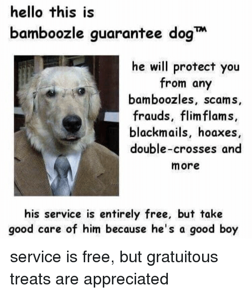 Hello, Memes, and Free: hello this is  bamboozle guarantee dogT  he will protect you  from any  bamboozles, scams,  frauds, flim flams  blackmails, hoaxes  double-crosses and  more  his service is entirely free, but take  good care of him because he's a good boy service is free, but gratuitous treats are appreciated