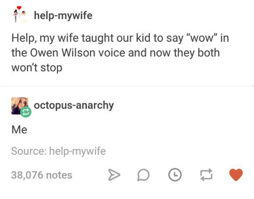 """Wow, Help, and Octopus: help-mywife  Help, my wife taught our kid to say """"wow"""" in  the Owen Wilson voice and now they both  won't stop  octopus-anarchy  Me  Source: help-mywife  38,076 notes >"""