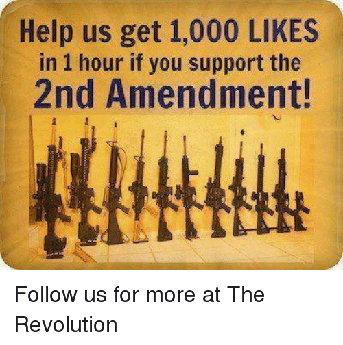 Help, Revolution, and 2nd Amendment: Help us get 1,000 LIKES  in 1 hour if you support the  2nd Amendment! Follow us for more at The Revolution