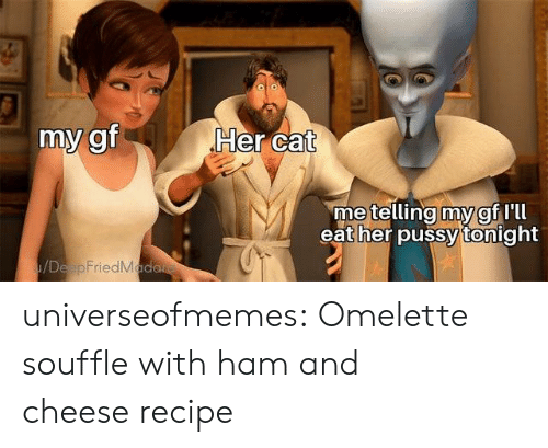 Pussy, Tumblr, and Blog: Her cat  my gf  metelling my gf Ill  eat her pussy tonight  /DeapFriedMada universeofmemes: Omelette souffle with ham and cheeserecipe
