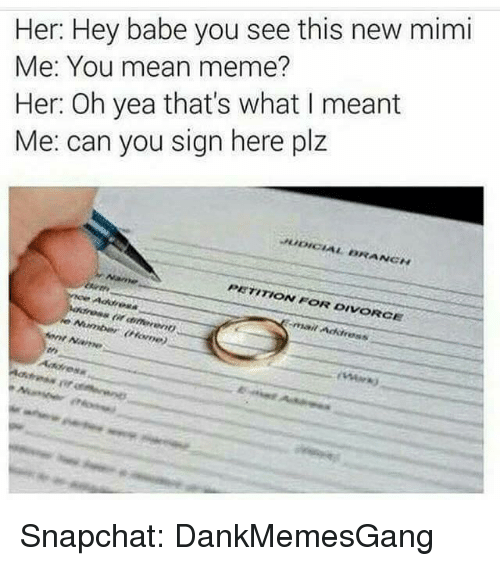 Mean Memes: Her: Hey babe you see this new mimi  Me: You mean meme?  Her: Oh yea that's what I meant  Me: can you sign here plz  BRANCH  PETITION FOR DIVORCE  Arnt Name Snapchat: DankMemesGang