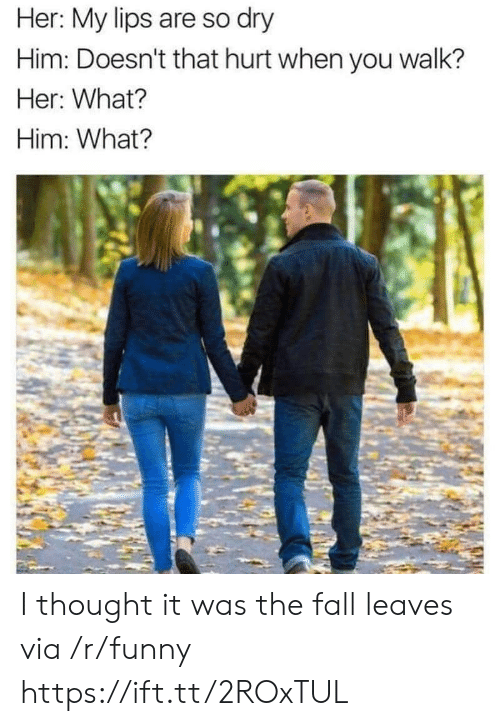 Fall, Funny, and The Fall: Her: My lips are so dry  Him: Doesn't that hurt when you walk?  Her: What?  Him: What? I thought it was the fall leaves via /r/funny https://ift.tt/2ROxTUL