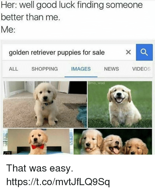 That Was Easy: Her: well good luck finding someone  better than me  Me:  golden retriever puppies for sale  ALL SHOPPING IMAGES NEWS VIDEOS  mowad That was easy. https://t.co/mvtJfLQ9Sq